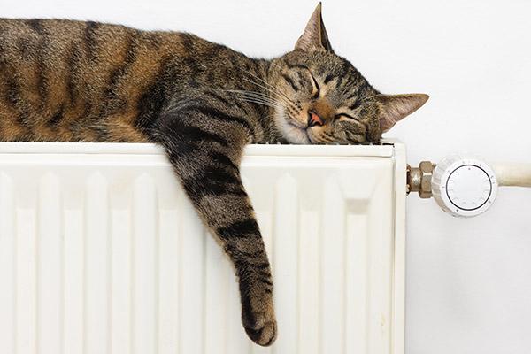 conseil hiver : bien régler son chauffage