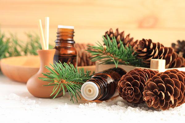 conseil hiver : assainir et purifier l'air
