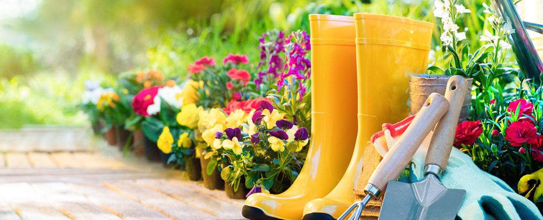 jardinage ubaldi