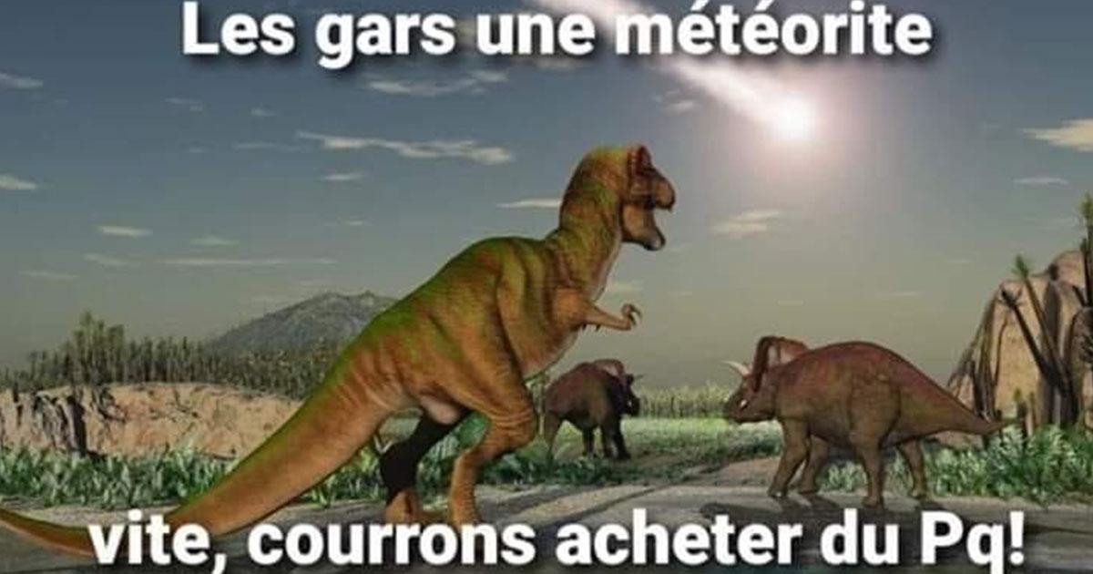 meme dinosaures coronavirus