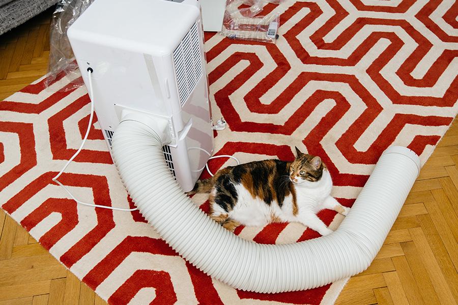 Installer évacuation pour climatiseur mobile