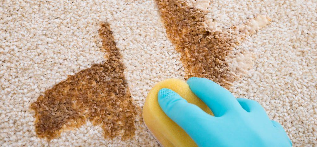 nettoyer-tapis-avec-savon-et-eponge-ubaldi