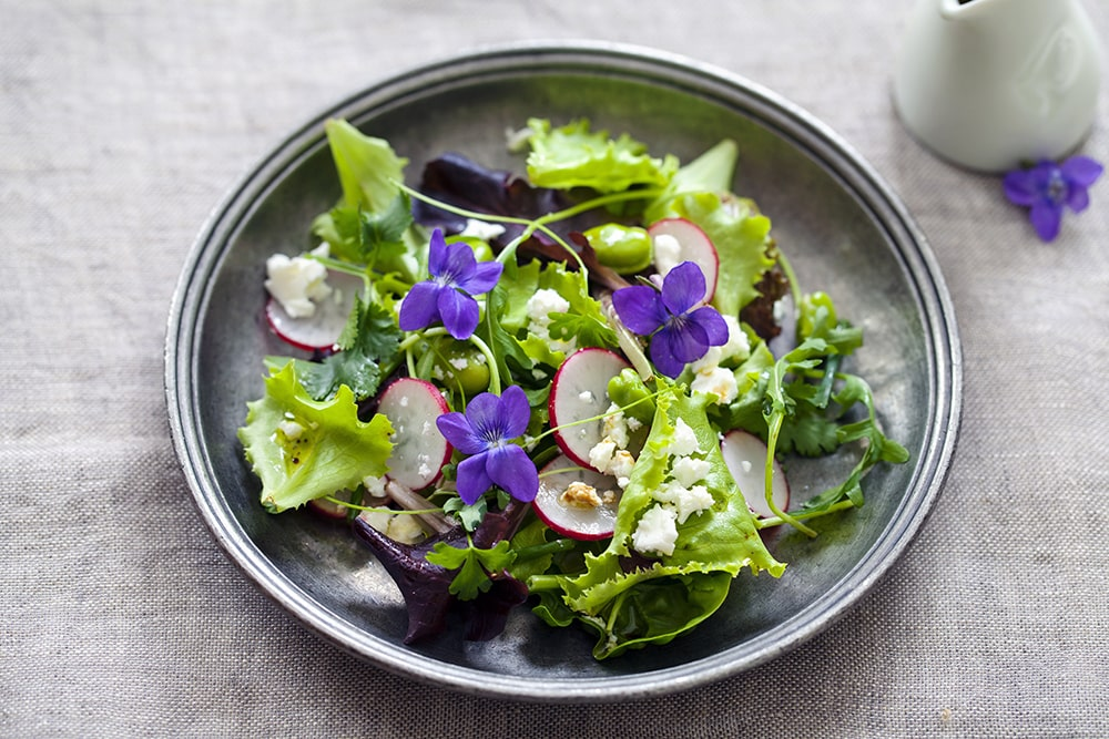 salade-printaniere-aux-radis-feves-et-violettes-ubaldi