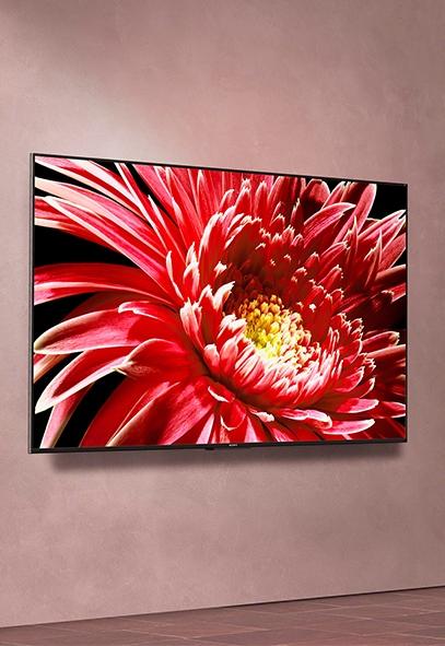 tv-plate-sony-murale